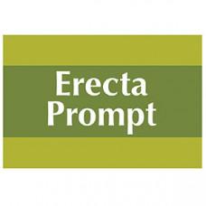 Erecta Prompt Cream